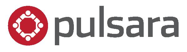 Copy_of_Pulsara_LogoTransparent_gray_600x169.png