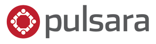 Copy_of_Pulsara_LogoTransparent_gray_600x169.png