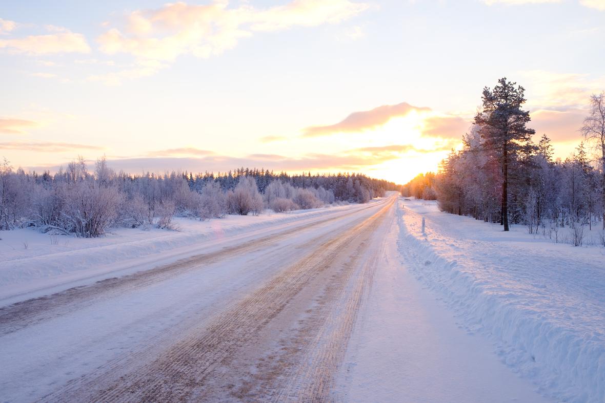 Pulsara-Around-the-Country-January-1